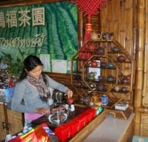 Teeverkostung in einem Teeshop in Doi Mae Salong