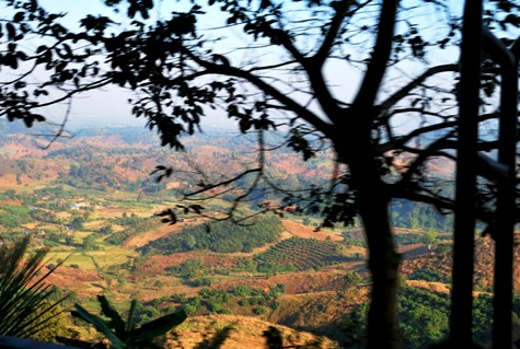 Sicht aus dem Songthaew von Mae Chan nach Doi Mae Salong, Thailand