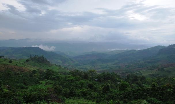 Ausblick über die Bergwelt um Doi Chang, Nordthailand