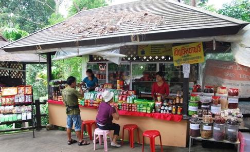 Royal Development Project Doi Tung, Nordthailand: Hilltribe-Basar, Tee-Shop