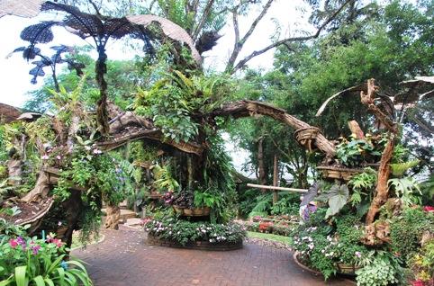 Royal Flower Garden, Doi Tung: Skulpturen aus Grünpflanzen und Blumen