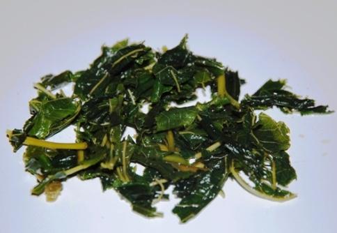 Maulbeerblätter aus Thailand, nass nach Tee-Zubereitung