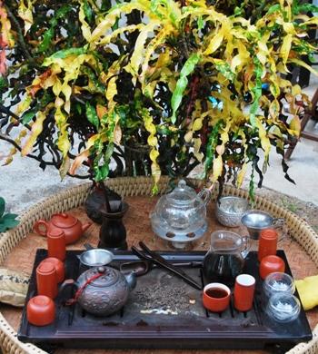 Zubereitung von gereiftem Lincang Pu Erh Tee in meinem Garten