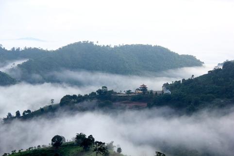 Tea Mastery School Doi Mae Salong in the clouds