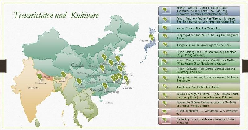 Teesorten und ihre Varietäten und Kultivare - geographischer Überblick